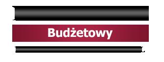 Newsletter Budżetowy - NEWSLETTERY.GOFIN.PL